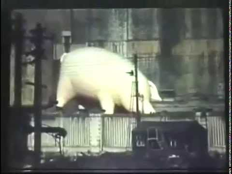 """Pink Floyd  -  """" Pigs on a Wing """""""
