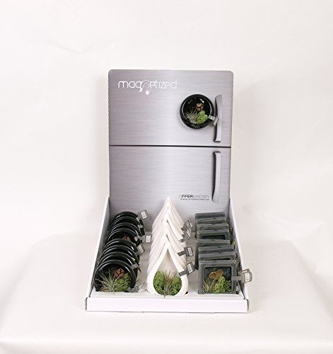 Moderrn Magnetic Air plant Gift - Send your love to someo... https://www.amazon.co.uk/dp/B01LYE5SIQ/ref=cm_sw_r_pi_dp_x_b9ejybWRN5NJT