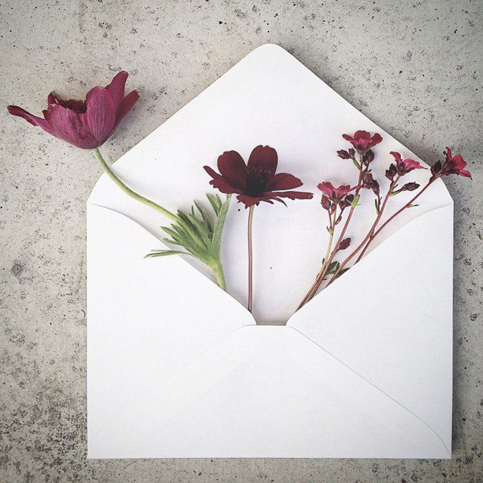 The Envelope Series 11