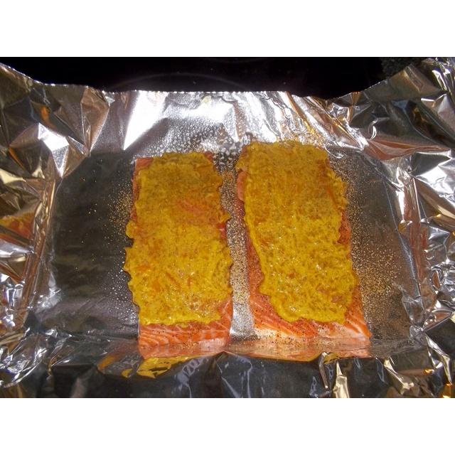 Oven Toaster: Toaster Oven Salmon