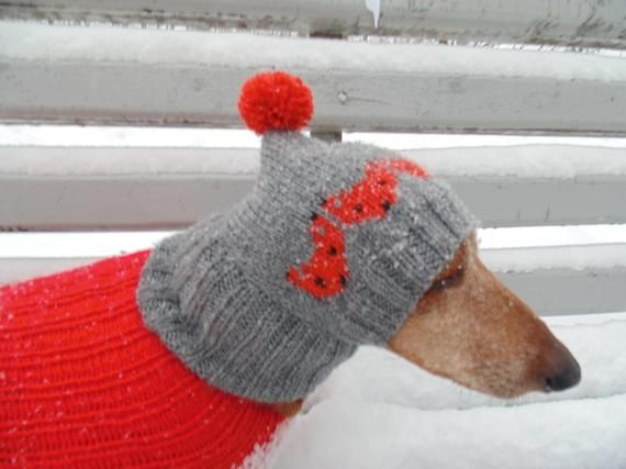 Winter Hat With Fox For Dachshund Dogs Etsy Winter Hats Dachshund Dog Dog Hat