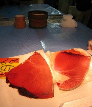 In the case of frozen tuna , so hard to understand the glue of fat If you are frozen , it is put in the shop is to extract the edge of the body in this way .