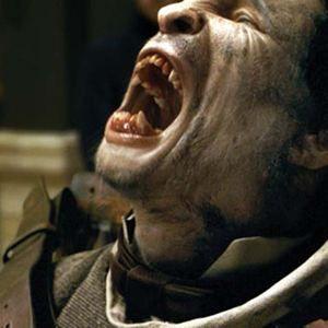 El hombre lobo : Foto Benicio Del Toro