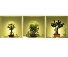 Set 3 stickere 3D Bonsai Trees