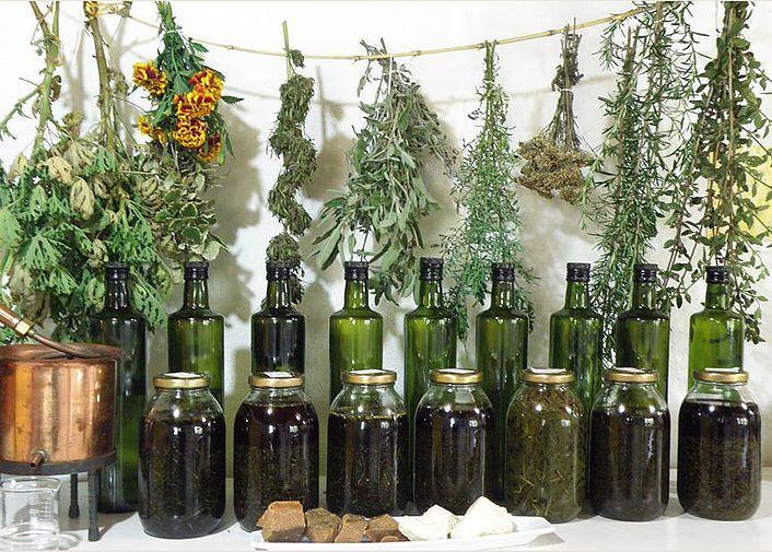 Taller de Hierbas #Places #Herbalism #Herbalismo #Plants #Magic #Nature #Beauty #Plantas #Hierbas #Herbs #Magia #MedicinaNatural #NaturalMedicine #HerbalMedicine #TallerDeHierbas #Oils