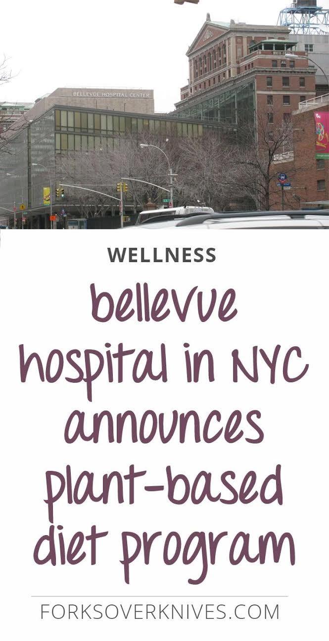 Sitename Bellevue Hospital Announces Plant Based Diet Program Bellevue Hospital Plant Based Diet Plant Based Lifestyle