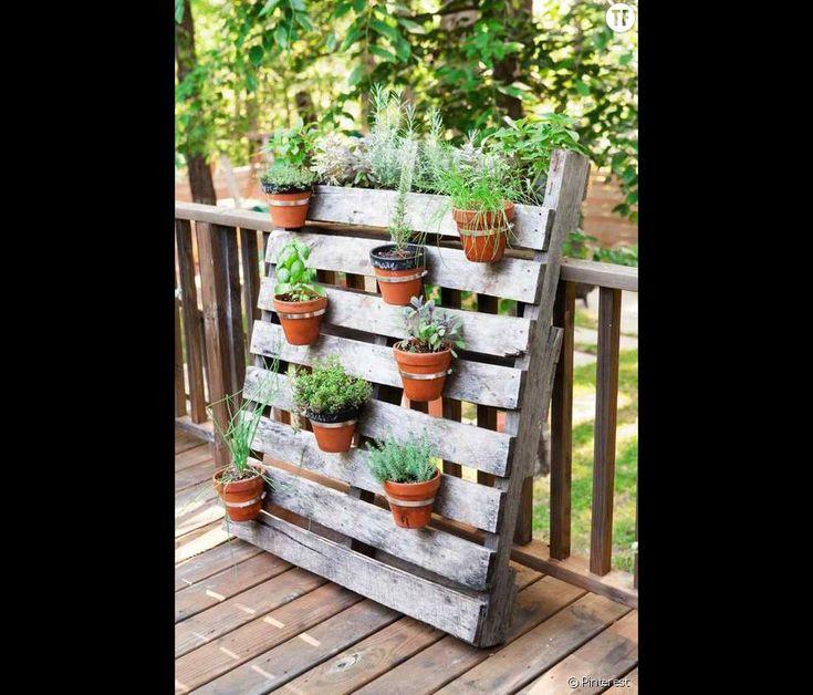 Une palette pour accrocher des plantes aromatiques
