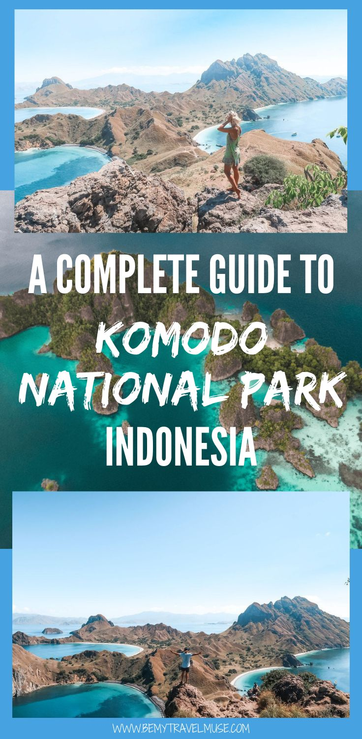 Komodo National Park: A Gem in Indonesia A guide t…