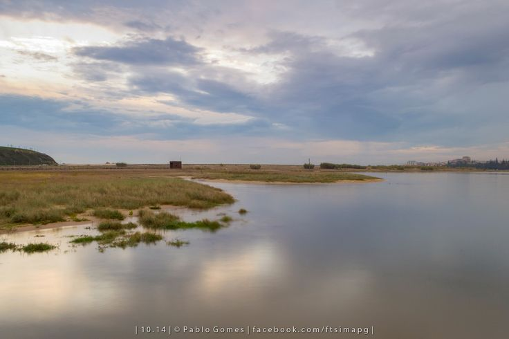 Reserva Natural Local do Estuário do Douro, Baía de São Paio / Reserva Natural Local del Estuario del Duero, Bahia de San Payo / Local Nature Reserve of Douro Estuary, Bay of St [2015 - Gaia - Portugal] #fotografia #fotografias #photography #foto #fotos #photo #photos #local #locais #locals #europa #europe #turismo #tourism #rio #rios #river #rivers #douro #duero #natureza #naturaleza #nature @Visit Portugal @ePortugal @WeBook Porto @OPORTO COOL @Oporto Lobers
