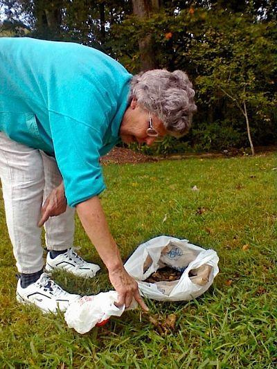 Goose poop for fertilizer.
