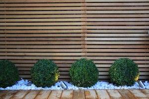 Urban contemporary garden design idea