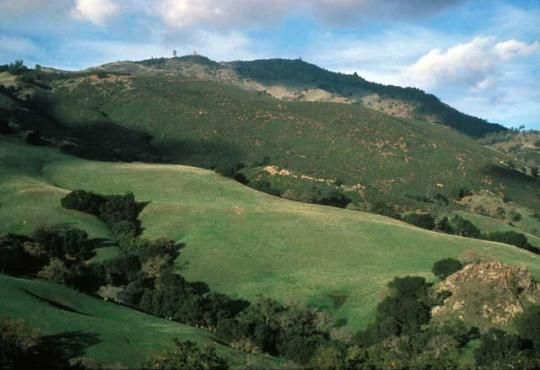 On a clear day, from the summit of Mount Diablo State Park visitors can see 35 of California's 58 counties. It is said that the view is surpassed only by that of 19,000-foot Mount Kilimanjaro in Africa.
