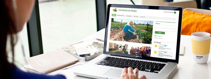 http://linkupchile.com -  Paginas web auto administrables y diseño adaptable a móviles - Nuestro estudio de diseño web profesional le dará a su negocio la credibilidad que merece con soluciones para ofrecer un diseño innovador, accesible, a medida y adaptado a su negocio. #seño, #web, #administrable, #móvil, #chile