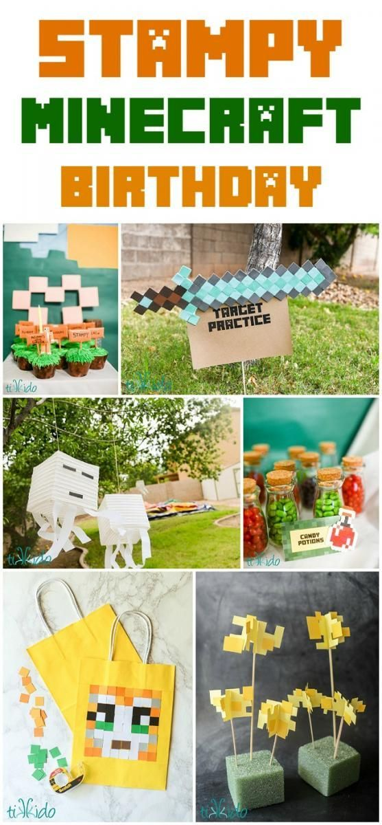 Stampy Longnose Minecraft themed birthday party.