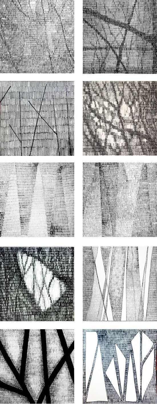 Studying the light through the trees during the workshop Working in a Series ©️️️️️️️️️2011 Lena Ohlen