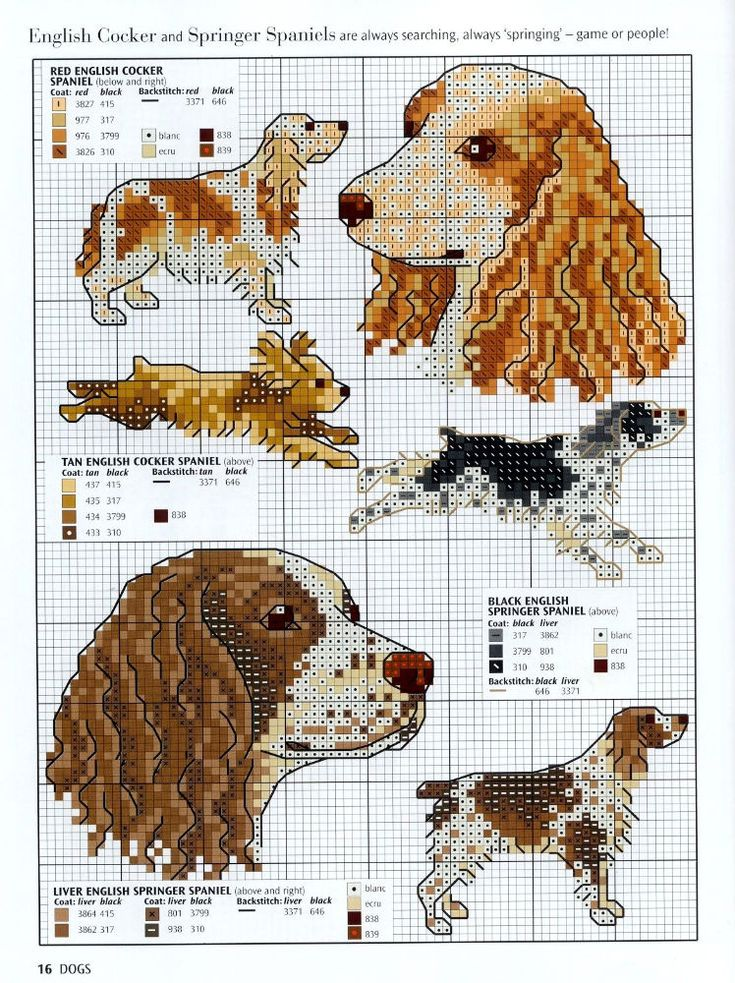 Picture your pet in cross stitch 08 dogs
