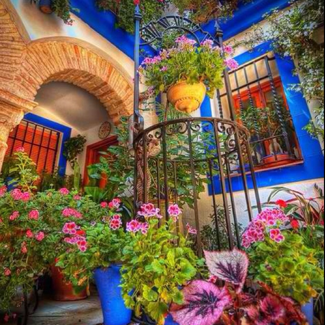 Mexican gardening  floral outdoors inspiration 30 best gardens images on Pinterest Gardening Backyard