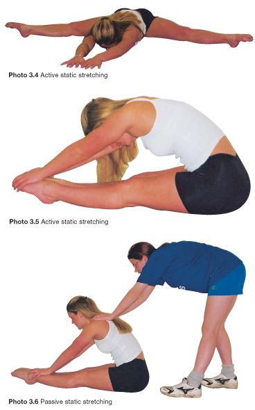 importance of stretching before exercise physical education essay Pre-exercise screening is used to identify people with medical conditions  a  health problem during physical activity  make sure you warm up and stretch  thoroughly before you head out.