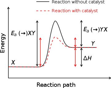 Activation energy - Wikipedia, the free encyclopedia (Energy of Activation)