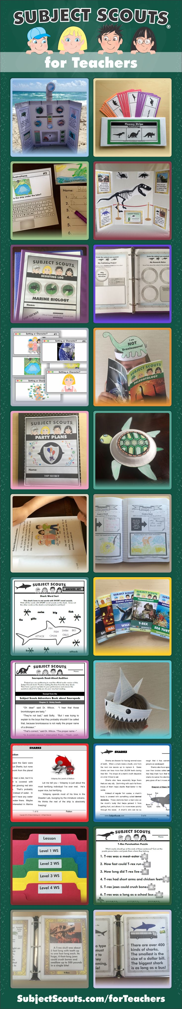Subject Scouts® for Teachers provides texts, worksheets, writing centers, task cards, fluency strips, printable crafts and much more.