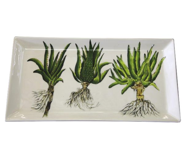 A multi-functional piece of art - a locally designed & manufactured rectangular Aloe Platter - hand painted by our in-house fine artist. #green #platter #ceramic