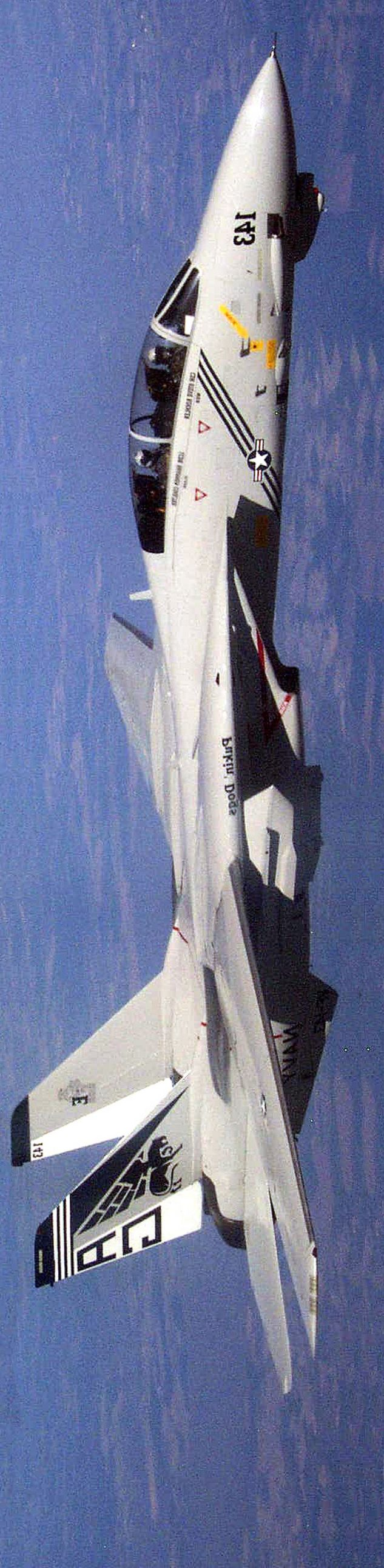 Amazing flying machine F-14 Tomcat