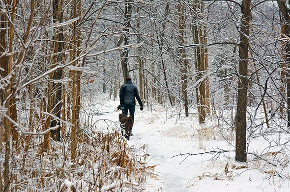 Best winter hiking trails in Toronto