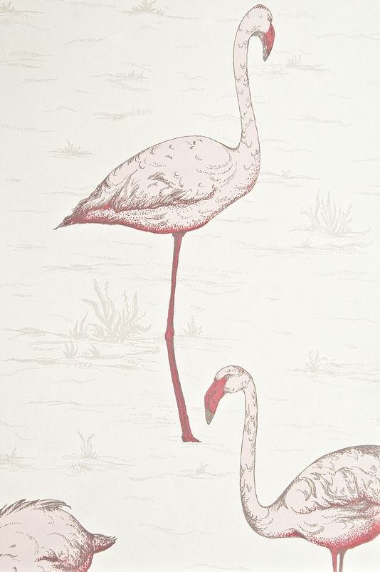 Flamingos restyled Wallpaper Pink Flamingo print wallpaper on white.