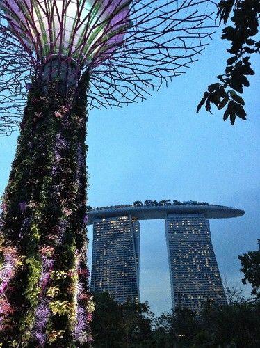 Singapura com crianças - tudo o que precisa saber para uma viagem tranquila
