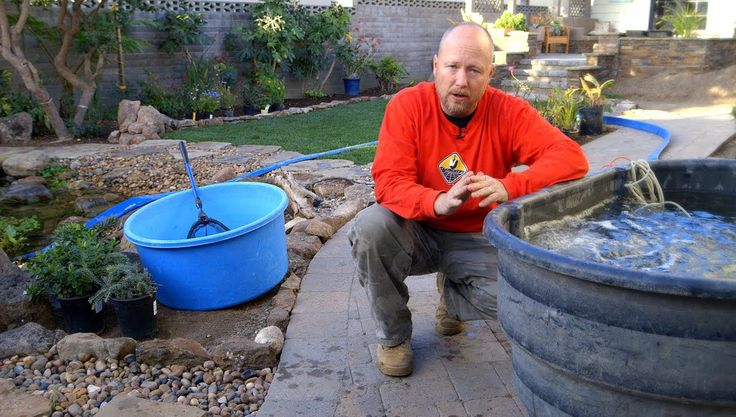 7 best pond service maintenance images on pinterest for Backyard pond maintenance