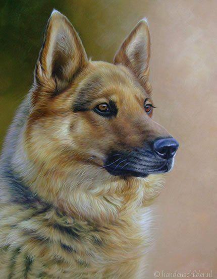 Honden portretten schilderij