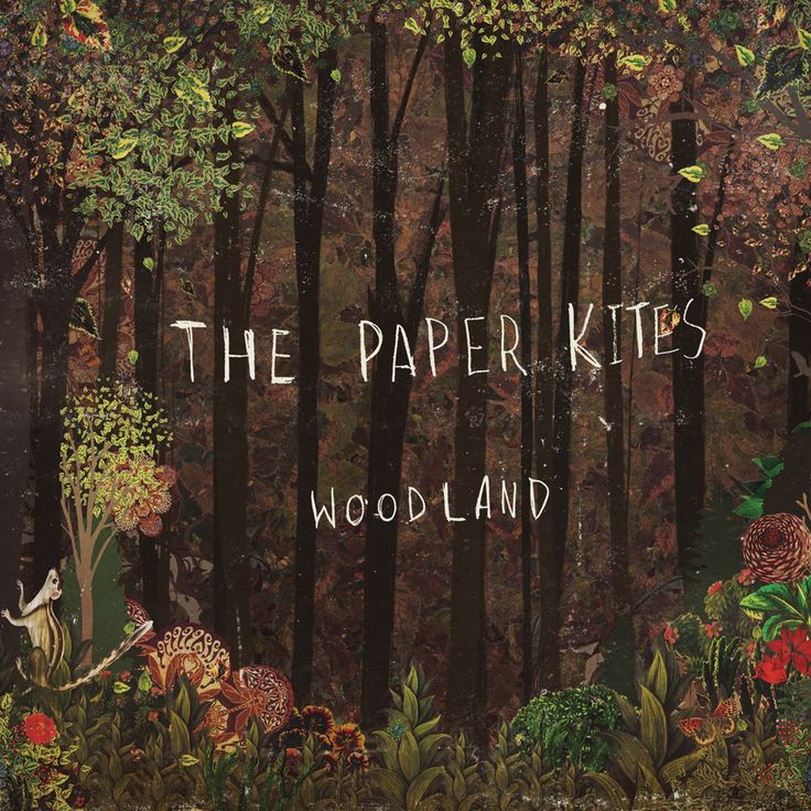 <Album> Woodland  <Artist> The Paper Kites  <Song> Willow Tree March