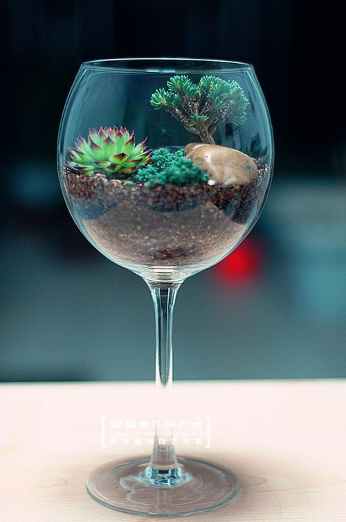 28 Beautiful ideas plant in a wine glass