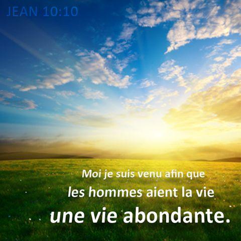 """La Bible - Versets illustrés - Jean 10:10 - Paroles de Jésus     Jésus dit encore: """"Le voleur vient uniquement pour voler, tuer et détruire. Moi, je suis venu pour que les humains aient la vie et l'aient en abondance. Je suis le bon berger. Le bon berger est prêt à donner sa vie pour ses brebis."""""""