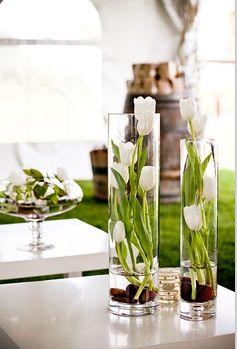 tulips- very pretty