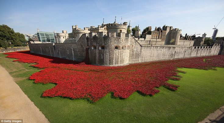 Sombre reminder: A staggering 888,246 poppies will eventually appear in the grounds of the...