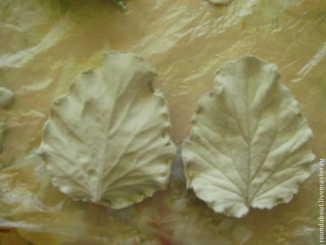 Для создания двусторонних молдов понадобится: гипс или алебастр, чашка, вода, ножик, чайная ложечка, листок и пленка. Гипс развести холодной водой до состояния жидкой сметаны. Листик положить на пленку и ложечкой выкладывать гипс, стараясь покрыть всю площадь листка равномерно. Я выкладываю примерно 1- 1,5 см.(зависит от величины листика). Когда выложили и слегка разровняли, нужно ост…