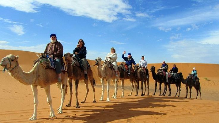 Are you looking for #MoroccoCamelTrekking? #CamelSafaris offers top quality service for those looking travel to #Morocco. http://camelsafaritreks.blogspot.in/2016/10/are-you-reckoning-about-morocco-camel.html