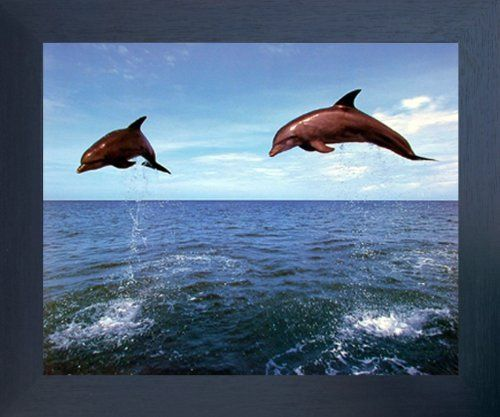 This stunning framed art poster will be the focal point of your room. This framed poster captures the image of bottlenose dolphins jumping upon the water is sure to catch lot of attention. It offers eye-catching appeal to your décor pattern. Your guests will definitely compliment you for your excellent taste. Its wooden espresso frame accentuates the poster mild tone. The frame is made from solid wood measuring 20x24 inches with a smooth gesso finish.