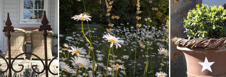 Garten Buchskugel Blumenwiese Korbmöbel Eisenzaun