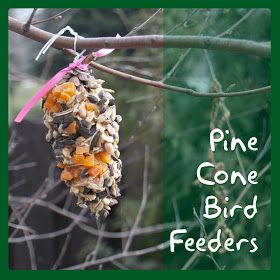 Beyond the Dryer Vent: Sensory DIY: Making Pine Cone Bird Feeders
