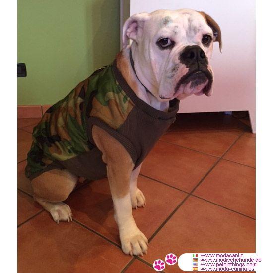 Giacca Mimetica per cani di grossa taglia con apertura sul dorso #ModaCani #BulldogInglese - Giacca Mimetica, in Nylon trapuntato e Poliestere, in modo da rimanere calda sul corpo del cane (grossa taglia) ed essere al contempo antivento e impermeabile. Apertura sul dorso con zip