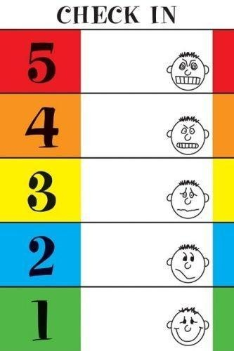 The 5-Point Scale - great tool for regulation/monitoring feelings and reactions