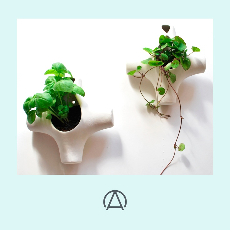 Bisque herb planters by Imiso Ceramics. Available from www.africandy.com