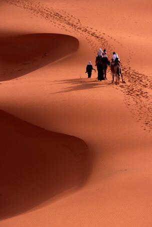 Saharan dunes, Morocco