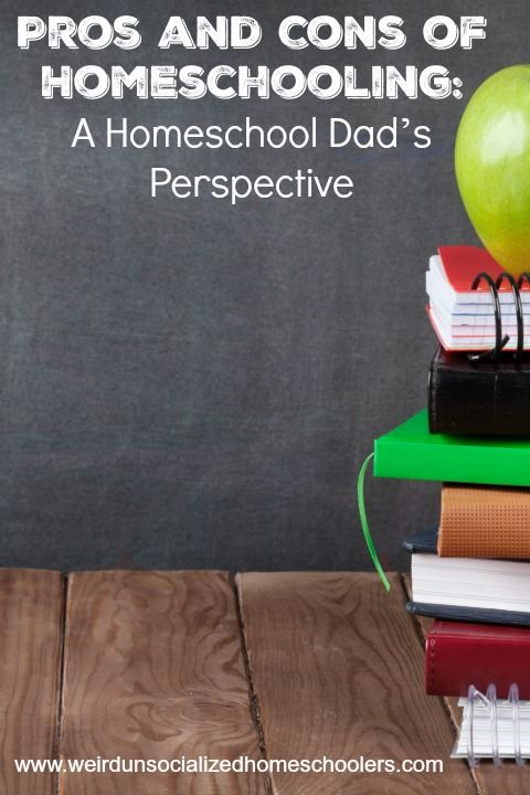 When thinking of the pros and cons of homeschooling, have you ever considered a homeschool dad's perspective? This article features one dad's opinion.