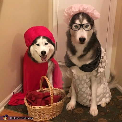 The 25+ best Grandma costume ideas on Pinterest