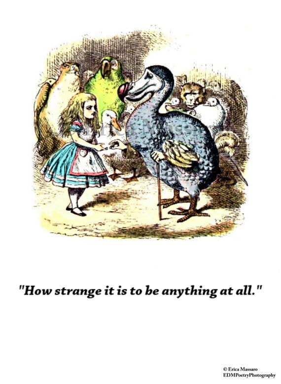 How Strange It Is Alice In Wonderland Quote Inspirational