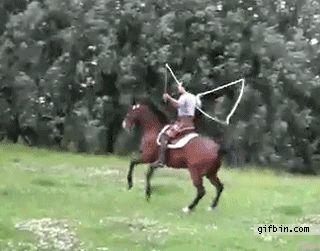 Horse jump rope