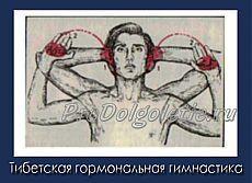 Тибетская гормональная гимнастика. Обсуждение на LiveInternet - Российский Сервис Онлайн-Дневников